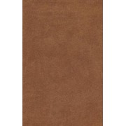Esv Holy Bible, Value Edition (Brown)