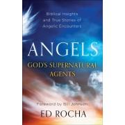 Angels - God's Supernatural Agents