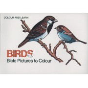 Bible Birds