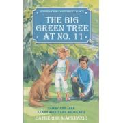 Big Green Tree At No. 11