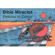 Bible Miracles