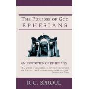 Purpose Of God, The