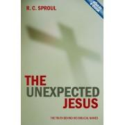 Unexpected Jesus, The