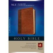 NLT Slimline Center Column Reference Bible, Tutone