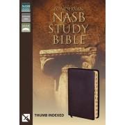 NASB Zondervan Study Bible, Burgundy, Indexed