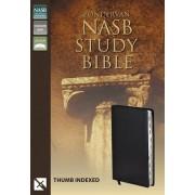 NASB Zondervan Study Bible Indexed