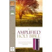 Amplified Holy Bible, Dark Orchid/Deep Plum
