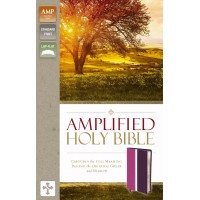 Amplified Holy Bible, Dark Orchid/Deep Plum