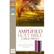 Amplified Holy Bible, Large Print, Orchid/Plum
