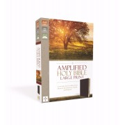 Amplified Holy Bible, Burgundy, Large Print