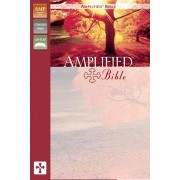 Amplified Bible Burgundy
