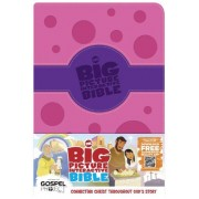 Big Picture Interactive Bible For Kids, Purple/Pink Polk, Th