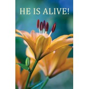 He Is Alive (Pack Of 25)
