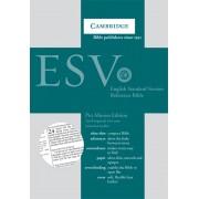 ESV Pitt Minion Reference Edition Es442:X Tan Imitation Leat