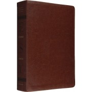 ESV Study Bible Natural Brown Trutone Imitation Leather