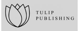 Tulip Publishers